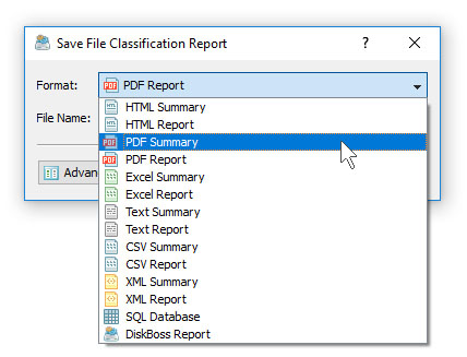 DiskBoss File Classification Save PDF Report