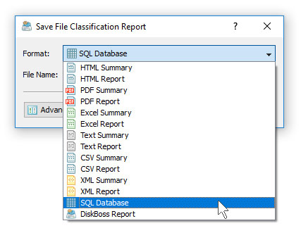DiskBoss File Classification Save SQL Database Report
