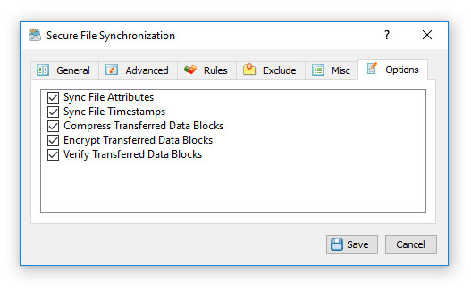Secure File Synchronization Options